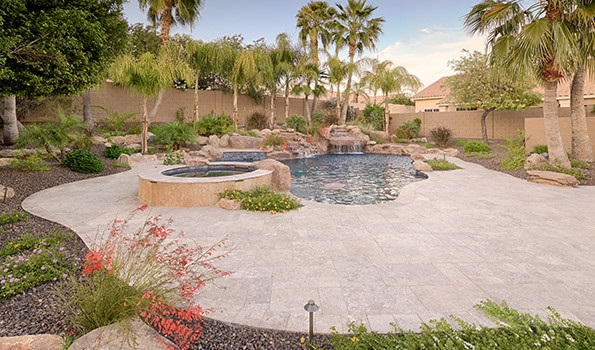 Which Plants Are Pool Friendly