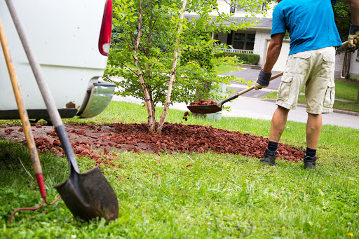 Hire a Landscaping Company Today