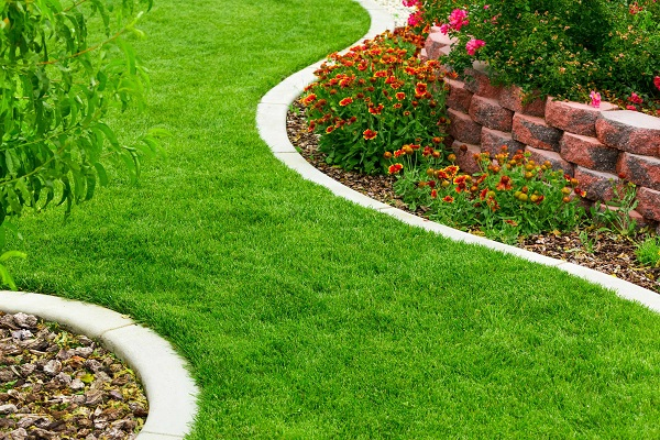 Benefits of Hiring Lawn Care Services