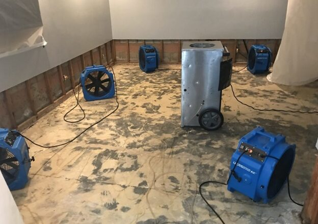 7 Things To Look For In Water Damage Restoration Services