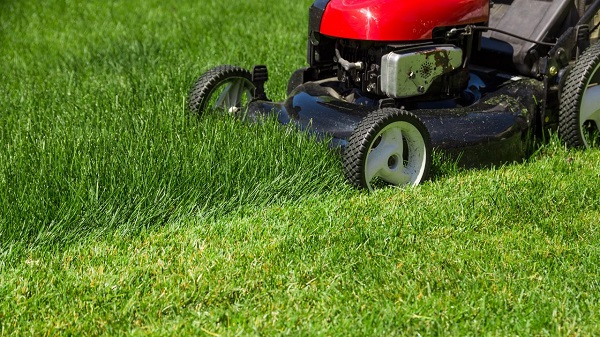 Benefits of Hiring a Lawn Mowing Service Provider