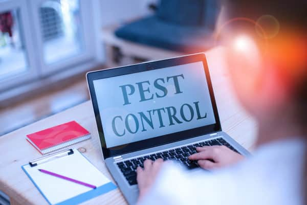 Information Related to Pest Control and Its Benefit