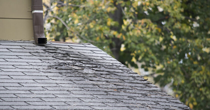 What to Do If You Have a Leak in Your Roof?