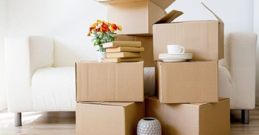 Rental Boxes for Shifting Houses – What's the Entire Hype About?