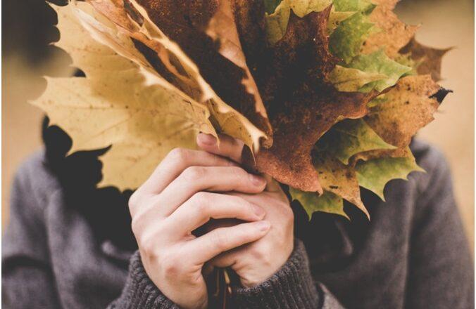 Leaf Blower VS Rake: When to Use Each
